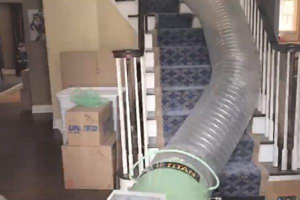 Bed Bug Removal in Philadelphia, PA